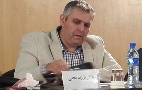 Standard and economic medicinal plants production in Iran, challenges and   strategies