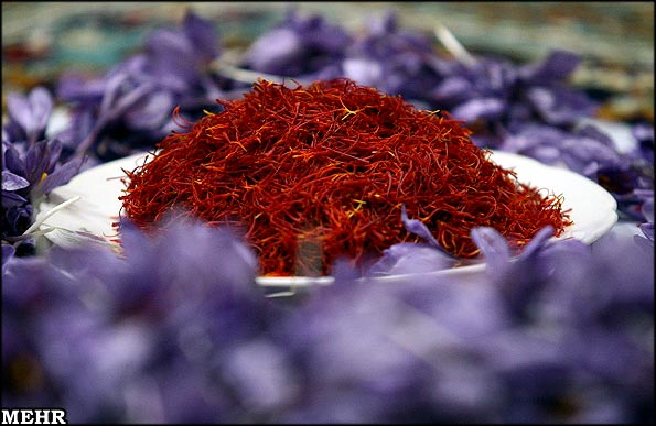20 Percent Increase in Saffron Export in 2016