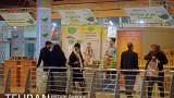 نمایشگاه ارگانیک